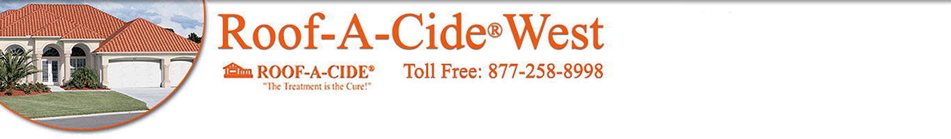 roof-a-cide & roof restore cleaner video